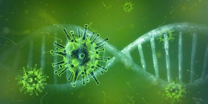 Finlandiya'da koronavirüsün yeni varyantı tespit edildi
