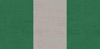 Nijerya, Türkiye'den Girişi Yasakladı