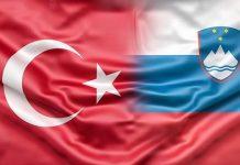 Slovenya'dan Türkiye'ye vize serbestliğinde destek sözü